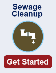 Sewage cleanup in rochester